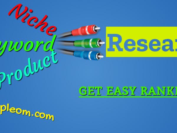 niche keyword